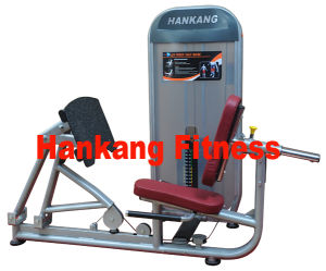 fitness machine, Ab + Low Back Equipment (HN-2008) pictures & photos