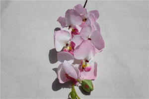 Wholesale Silk Flowers Artificial Orchids Phalaenopsis Flower pictures & photos
