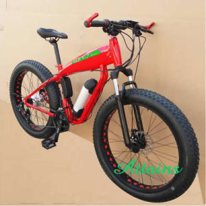 26*4.0 Inch 500W Beach Snow Mountain Fat Tire Electric Bike pictures & photos