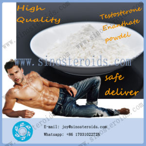 Testosterone Enanthate Steroids Hormones Powder Test Enanthate for Bodybuilding pictures & photos