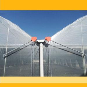 Multi-Span Cheap Agricultural Film Greenhouse for Vegetable pictures & photos