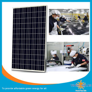 Yingli Brand High Quality Poly Solar Panel (SZYL-P150-18) pictures & photos