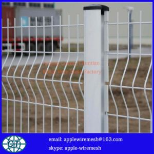 PVC-Coated Euro Wire Fence in Factory Price pictures & photos
