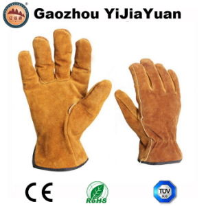Ab Grade Cowhide Split Leather Safety Hand Protective Drivers Gloves pictures & photos