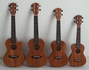 Koa Pili Koko All Solid Mahogany Body Hawaii Ukulele pictures & photos