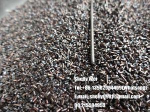 Carbon Steel Cut Wire Shot, Steel Shot, Stainless Steel Cut Wire Shot, Copper Cut Wire Shot, Zinc Cut Wire Shot, Aluminum Cut Wire Shot, Brass Cut Wire Shot pictures & photos