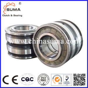 Double Row Cylindrical Roller Positioning Bearing (SL01 4912 - SL01 4980) pictures & photos