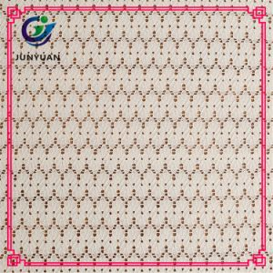 New Design Spandex and Polyester Elastic Lace Fabric pictures & photos