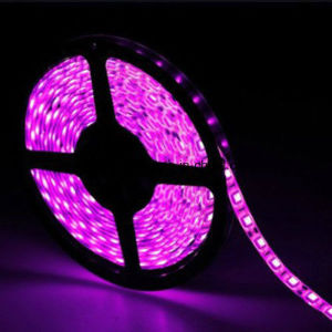 Pink 5m SMD5050 Flexible Waterproof Light Strip Ribbon pictures & photos