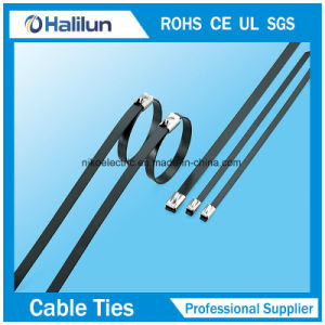 4*300 Stainless Steel Ball Lock Cable Tie in Bundling Wires pictures & photos