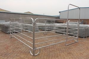 Heavy Duty Galvanized Portable Horse Fence Panels & Gate (XMS-D) pictures & photos