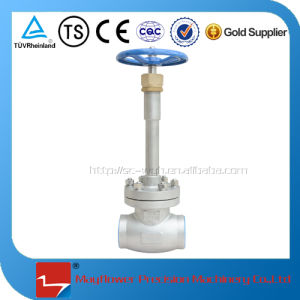 Cryogenic Manual Globe Valve for LNG Station pictures & photos
