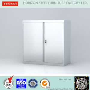 Steel Low Storage Cabinet with Two Swinging Doors
