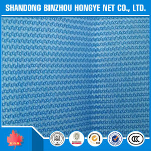 Blue Protection Durable PE Construction Safety Net pictures & photos