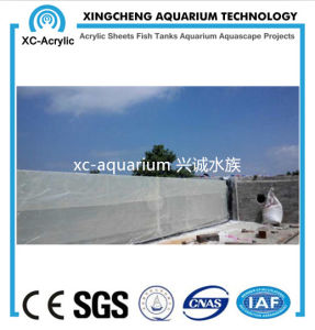 Swimming Pool Project Acrylic Glass Sheet Price pictures & photos