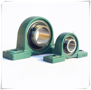 China Bearing Supplier Hotsale and Top Product Pillow Block Bearing pictures & photos
