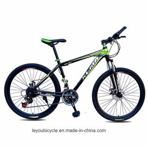 Wholesale Cheap Mountain Bike (ly-a-40) pictures & photos