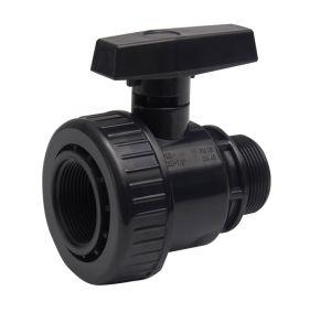 PVC Single Union Ball Valve F*M-NPT Standard (GT243) pictures & photos