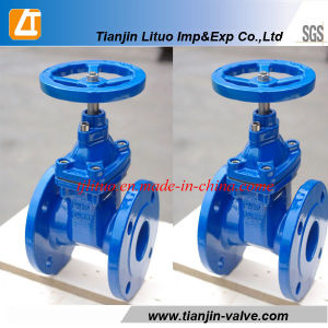 DIN Standard, Ductile Iron Non-Rising Resilient Seated Gate Valve (DN50-600) pictures & photos