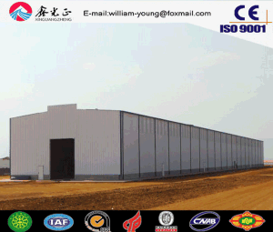 Prefabricated Warehouse/Steel Frame/Steel Structure Shed (JW-16290) pictures & photos