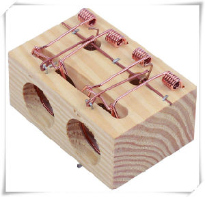 Useful 2 Holes Wooden Mouse Cage for Gardening (V14012) pictures & photos