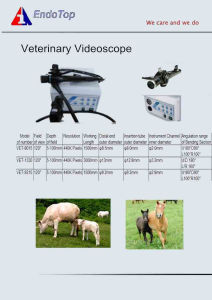 Veterinary Videoscope pictures & photos