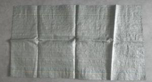 40*57cm Korea PP Woven Bag pictures & photos