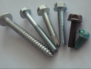 Zinc Plated Steel Flange Bolt, Flange Screw pictures & photos