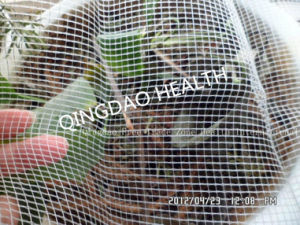 4mx100m 40X40mesh Anti-Insect Net pictures & photos
