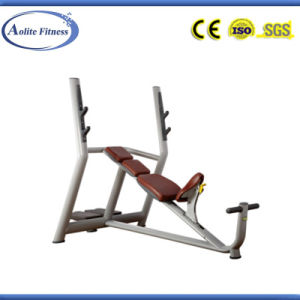 Comfortable Weight Lifting Bench (ALT-9024) pictures & photos