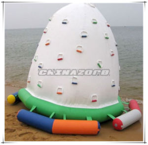 Creative Designed Water Climbing Tower Inflatable Toy From Original Factory pictures & photos