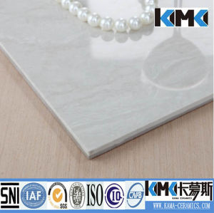 Hot Sale Promotion Wall and Floor Tile (DH8002)