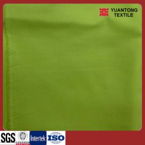 Green 100%Cotton Corduroy Fabric pictures & photos