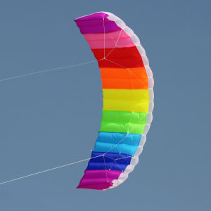 Dual Line Parafoil Kite for Promotion pictures & photos