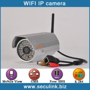 720p IP Camera (IPC1100F-W)