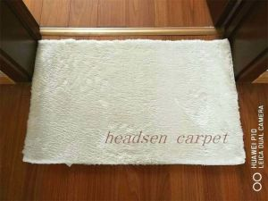 The Most Preferential Price for The Advanced Imitation Wool Carpet pictures & photos