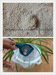 Natural Cat Litter/ Bentonite Cat Litter pictures & photos