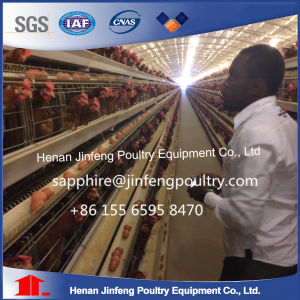 Agricultural Equipment Design Layer Chicken Cages for Sale pictures & photos