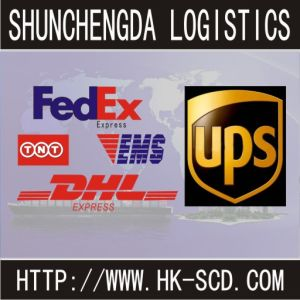 Logistics/Shipping Freight/Shipping Service