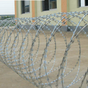 Low Price Concertina Galvanized Razor Barbed Wire pictures & photos