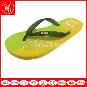 Indoors or Outdoors Flip Flips Leisure Slippers pictures & photos