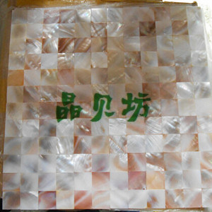 Seamless Freshwater Mother of Pearl Shell Mosaic Tile/ Interior Background