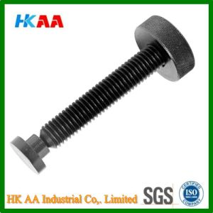 Aluminum / Brass Knurled Thumb Screw, Knurled Cap Screw pictures & photos