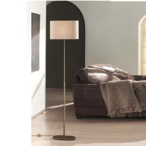 Very Simple & Competitive Project Floor Lamp / Hotel Lamp pictures & photos