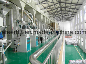 15 - 300ton/Day Complete Parboiled Rice Mill pictures & photos