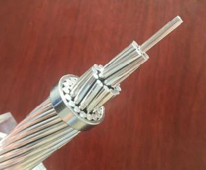 Arbutus AAC 795mcm Bare Strand Conductor /All Aluminium Conductors for Hot Sale USA Market pictures & photos