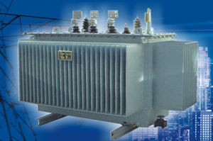 Distribution Transformer Three Phase Enclosed Distribution Transformer pictures & photos