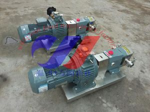 Rotor Pump Used in Thick Liquid pictures & photos