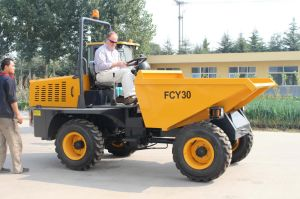 Self-Discharging Mini Hydraulic Site Dumper pictures & photos