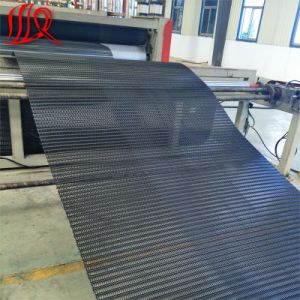 PP Biaxial Geogrid Used for Road Construction pictures & photos